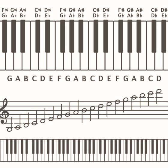 Piano piano chords playing : Basic guides for playing chords